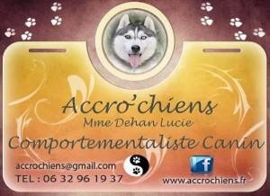 accro_chien